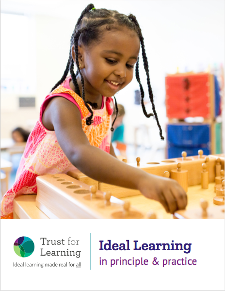 Ideal Learning in principle and practice